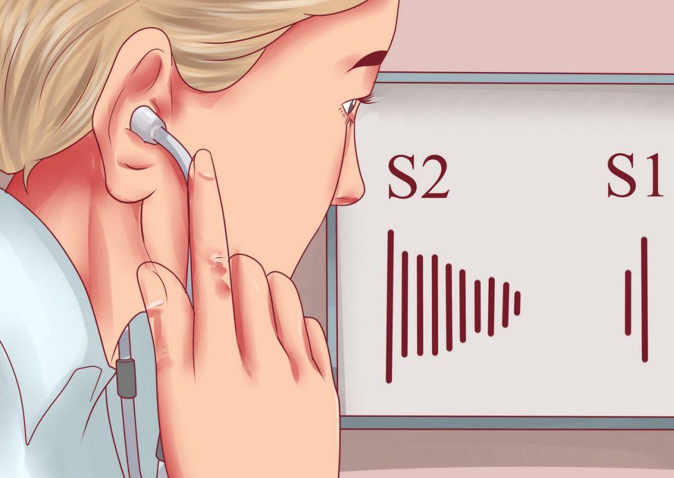 روش سمع قلب و صداهای طبیعی قلب
