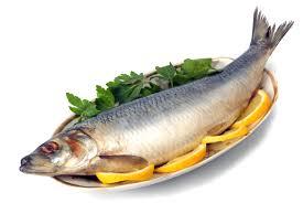 افسار دیابت نوع یک را با این ماده غذایی در دست بگیرید