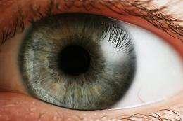 کشف یک سلول دخیل در نزدیک بینی چشم