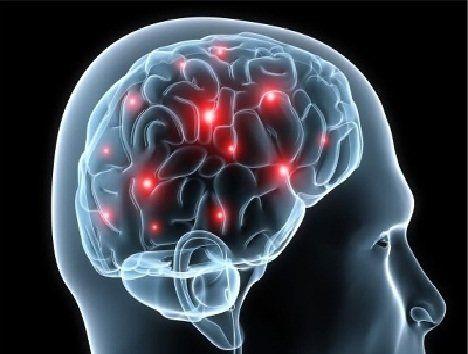 کنار گذاشتن ورزش چه تاثیری بر مغز میگذارد؟