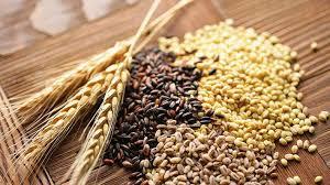 راهنمای مصرف غذا در زخم معده و اثنیعشرََ