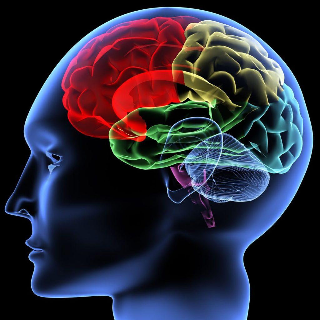 گشایش بزرگترین پژوهشکده مربوط به بیماری های اعصاب