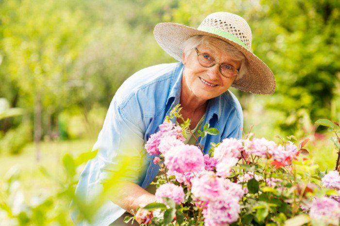 فواید باغبانی برای سلامت زنان مسن