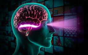 علت مرگ سلول های عصبی شناسایی شد