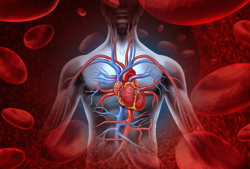 ساخت یک شناور ریز برای نظارت بر گردش خون