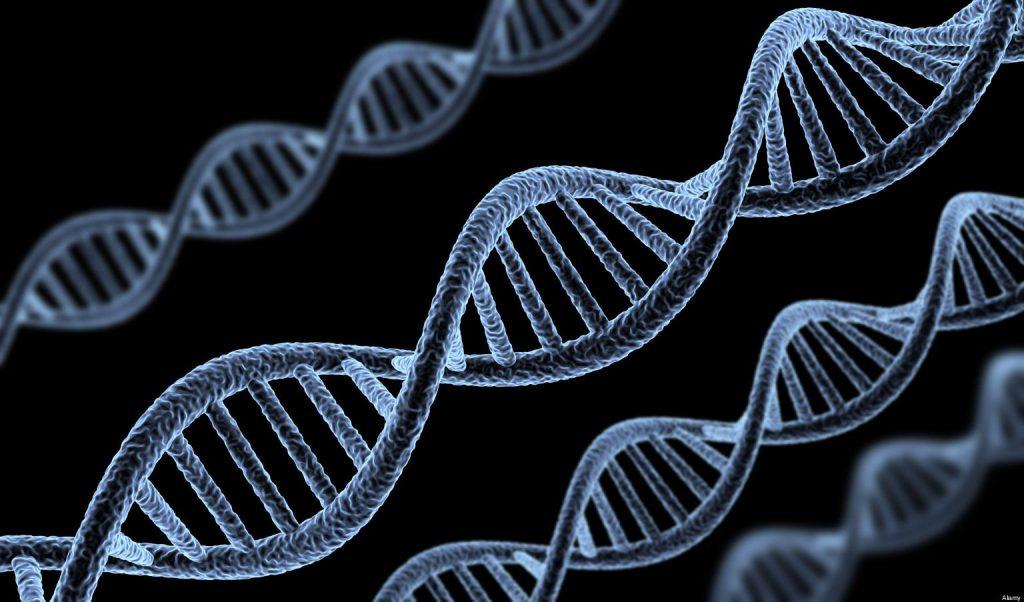 کشف اختلال ایمنی ژنتیکی جدید