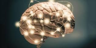 چه بخوریم که تومور مغزی نگیریم؟