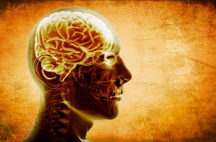 درمان برخی سرگیجه ها با توانبخشی
