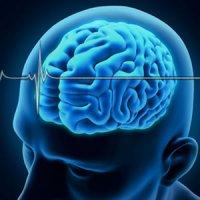 برای داشتن مغز سالم از گوشی هوشمند خود دوری کنید