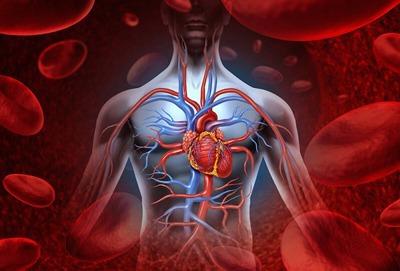فرمول ویتامینی برای بهبود گردش خون