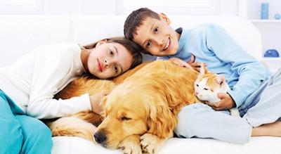 نگهداری از حیوانات و تأثیر آن در سلامت انسان ها
