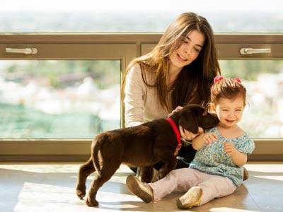 چگونه ترس از حیوانات در کودکان را برطرف کنیم؟