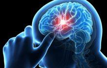 با مصرف روزانه 9 ماده غذایی سالم، سکته مغزی را از خود دور کنید