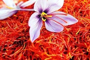 زعفران برای مهار سلول های سرطانی