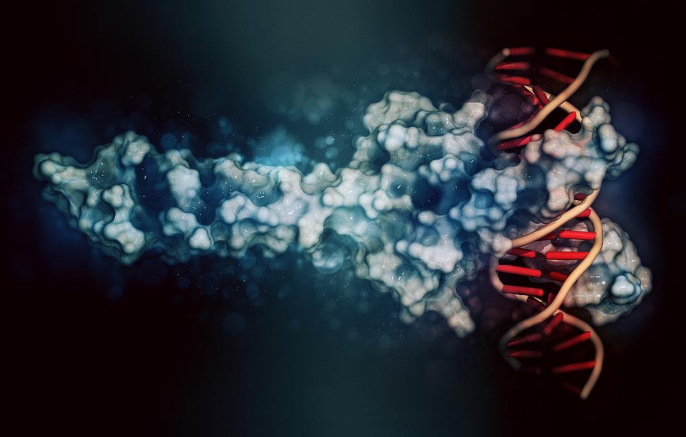 عامل رونویسی ژنتیکی
