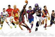 شخصیت شناسی از روی ورزش مورد علاقه
