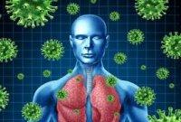 14 خوراكی مفید برای تقویت سیستم ایمنی بدن